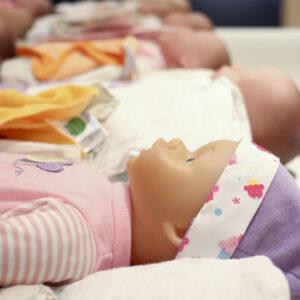 Parenting the Newborn